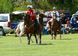 2014 Polo Photo #6